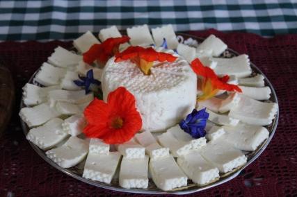queijo_fazenda_palmeira