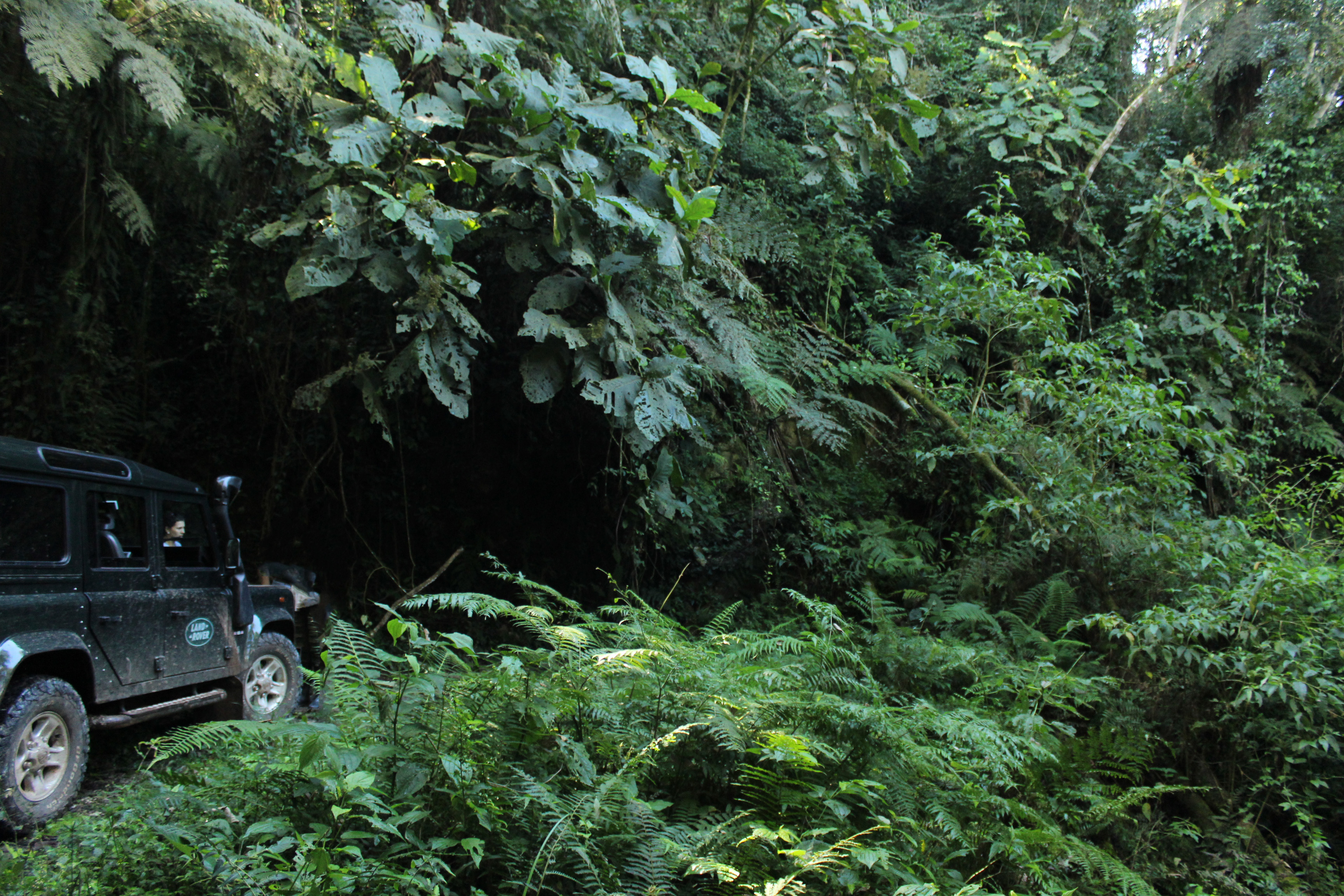 Trilha da Lumber-Vale do Itararé_.jpg