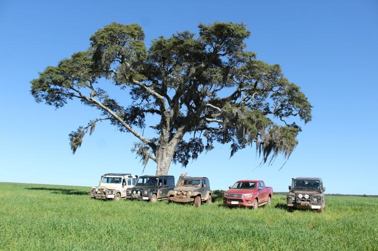 trilha off road Vale do Itararé árvore da Lenda