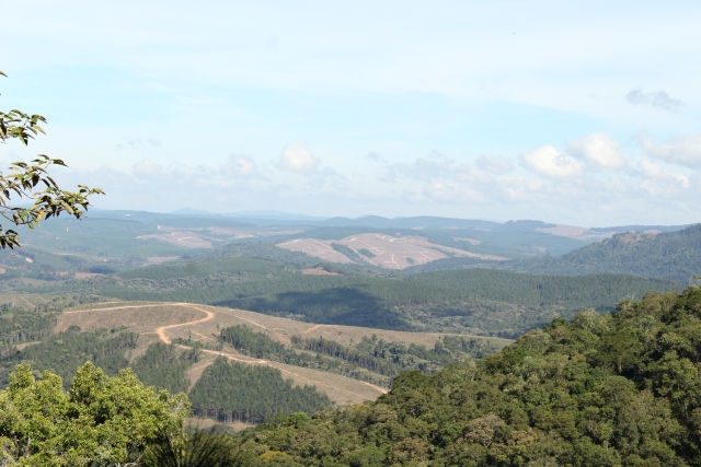 Visão da Serra da Lumber_Vale do Itararé
